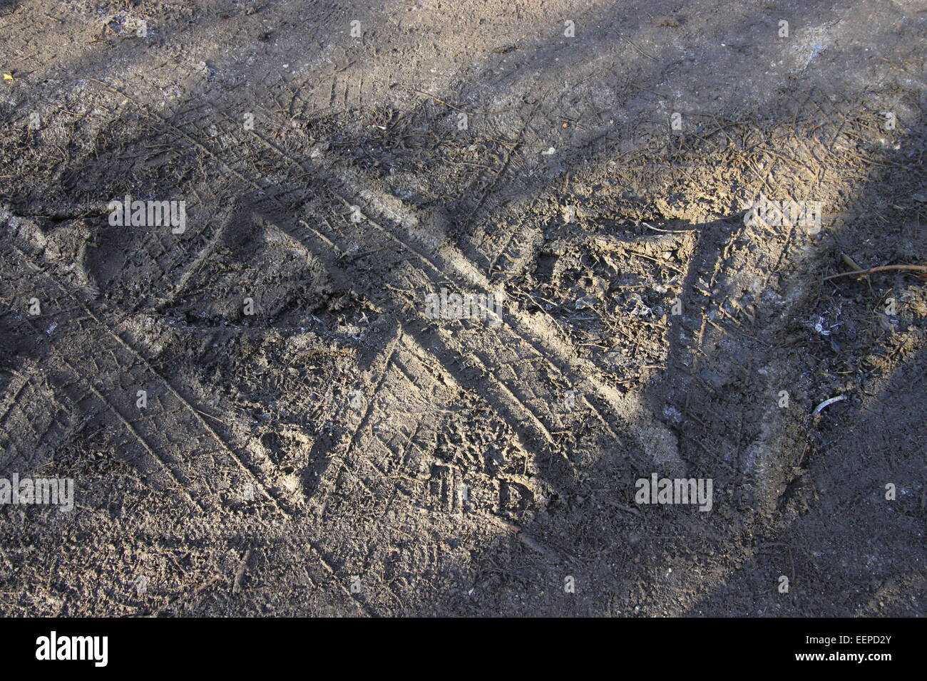 Tyre tracks in mud making a letter 'X' - Stock Image