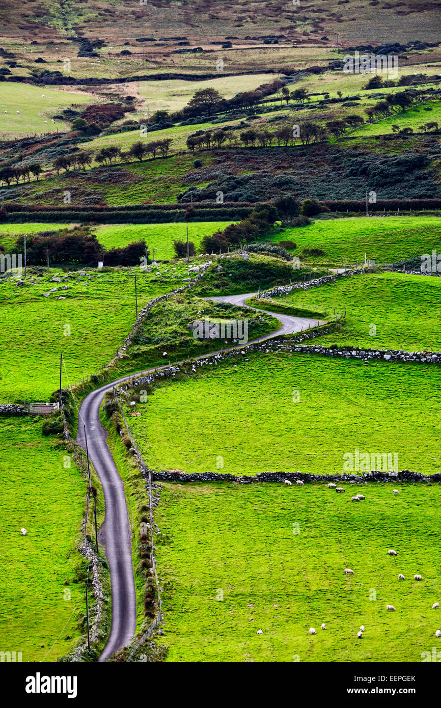 small winding country road in rural ireland - Stock Image