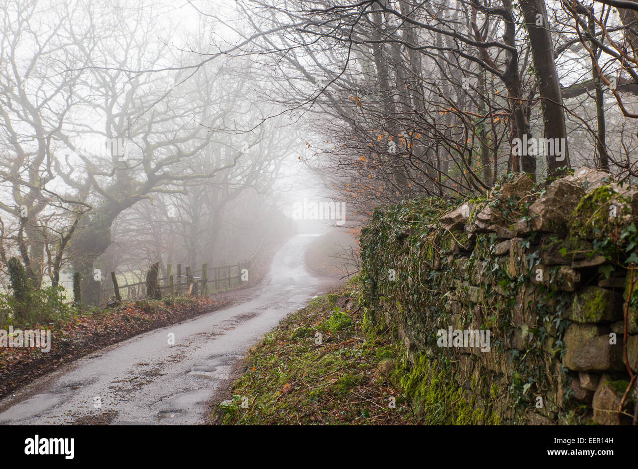 Cardiff, Wales, UK. 21st Jan, 2015. UK Weather: Cardiff was wet and cold this morning. After a few flurries of snow - Stock Image