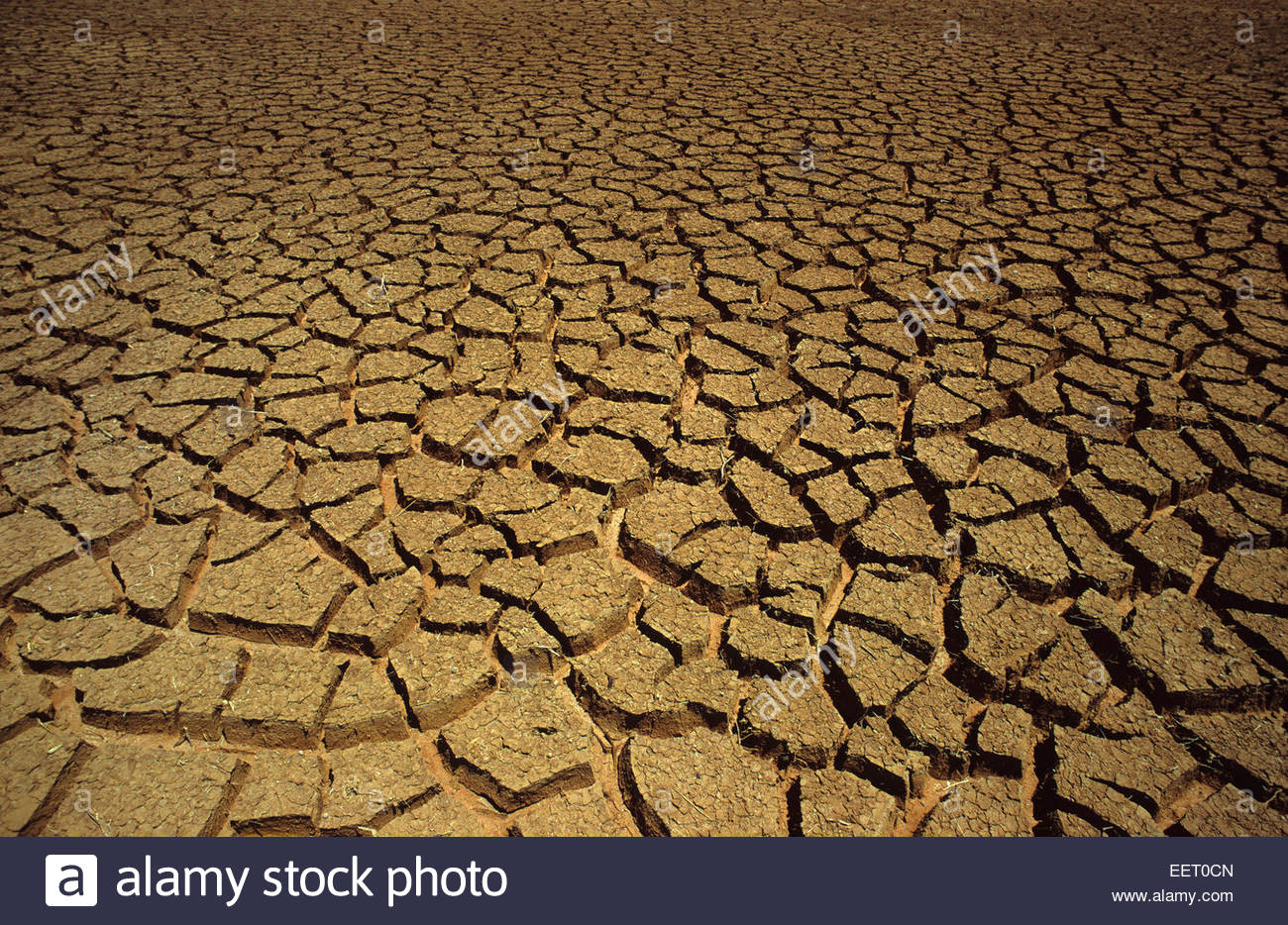 Desertification, Namibia. - Stock Image