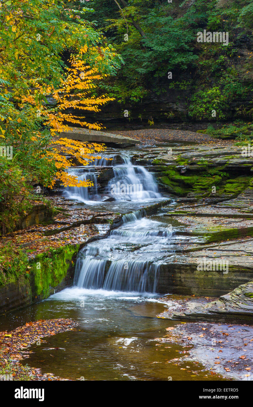 Small fwateralls on McClure Creek in Havanna Glen Park in the town of Montour Falls in the Finger Lakes Region of Stock Photo