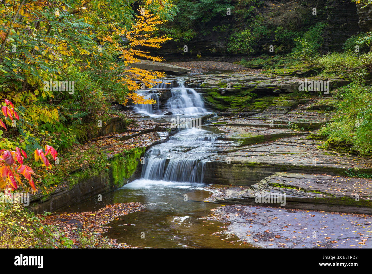 Small wateralls on McClure Creek in Havanna Glen Park in the town of Montour Falls in the Finger Lakes Region of Stock Photo