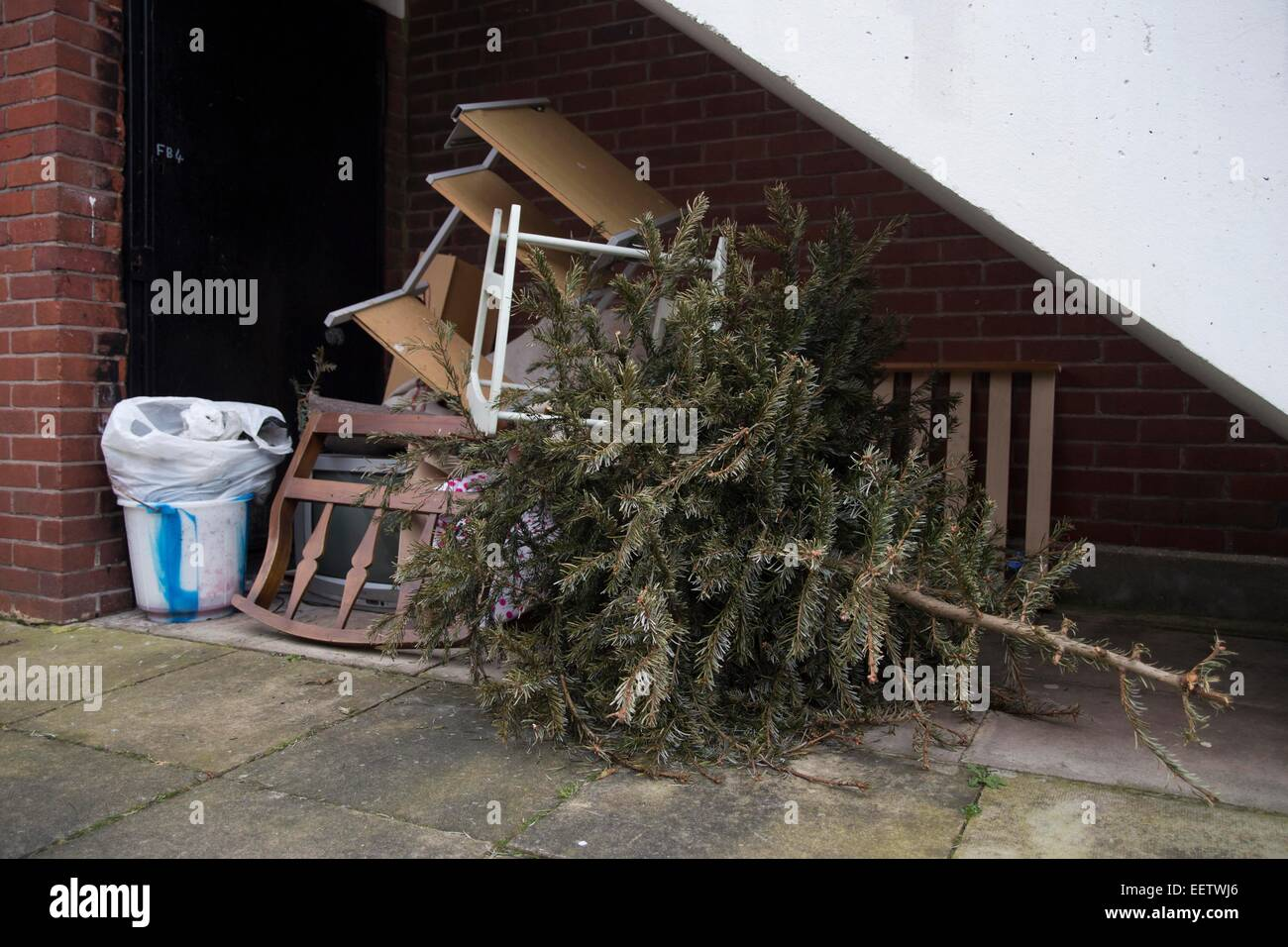 Christmas tree discarded with the rubbish. Christmas is over. January blues. Littering. Fly-tipping. - Stock Image