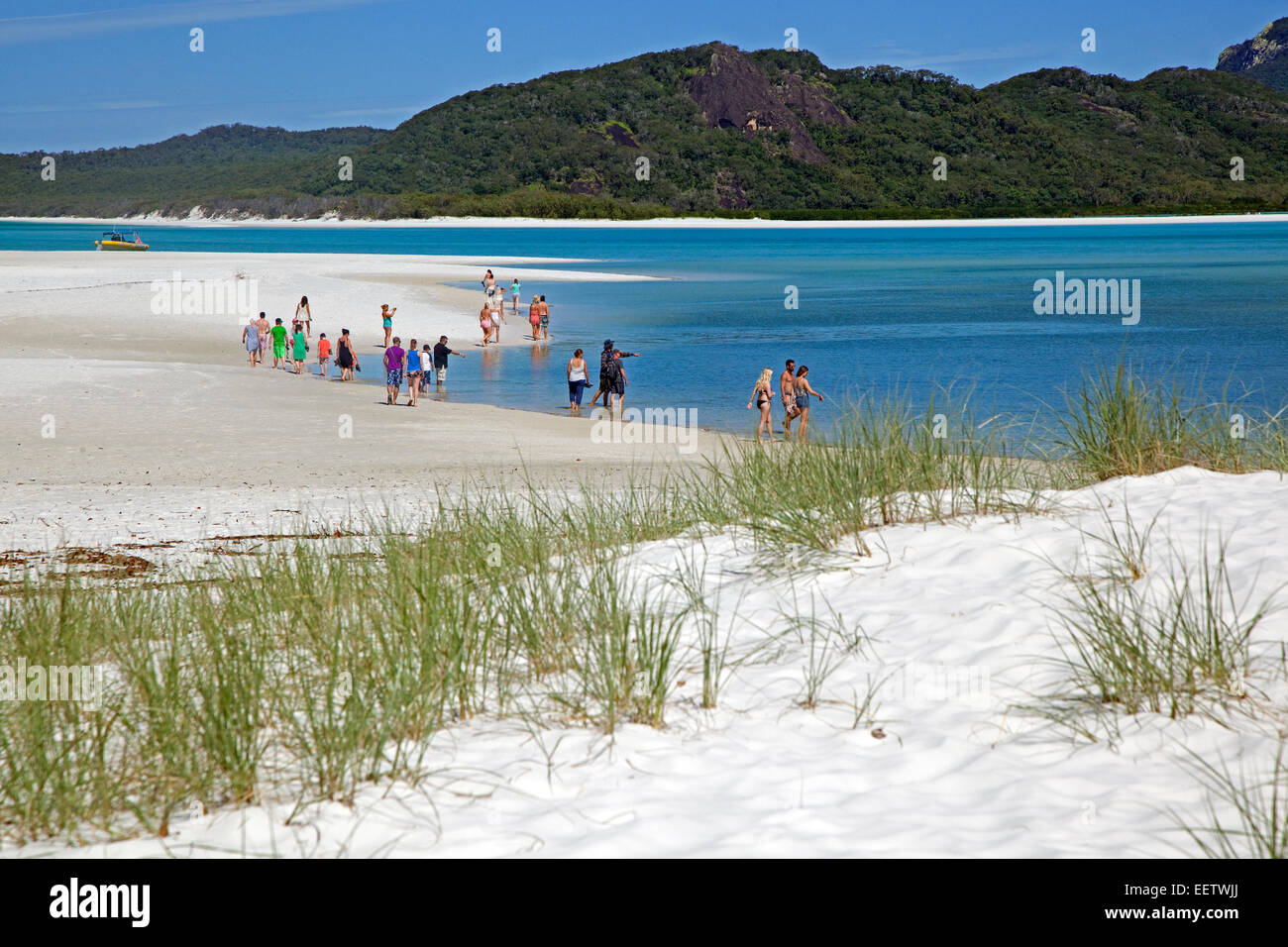 Tourists visiting the shoreline of Whitehaven Beach on Whitsunday Island in the Coral Sea, Queensland, Australia - Stock Image