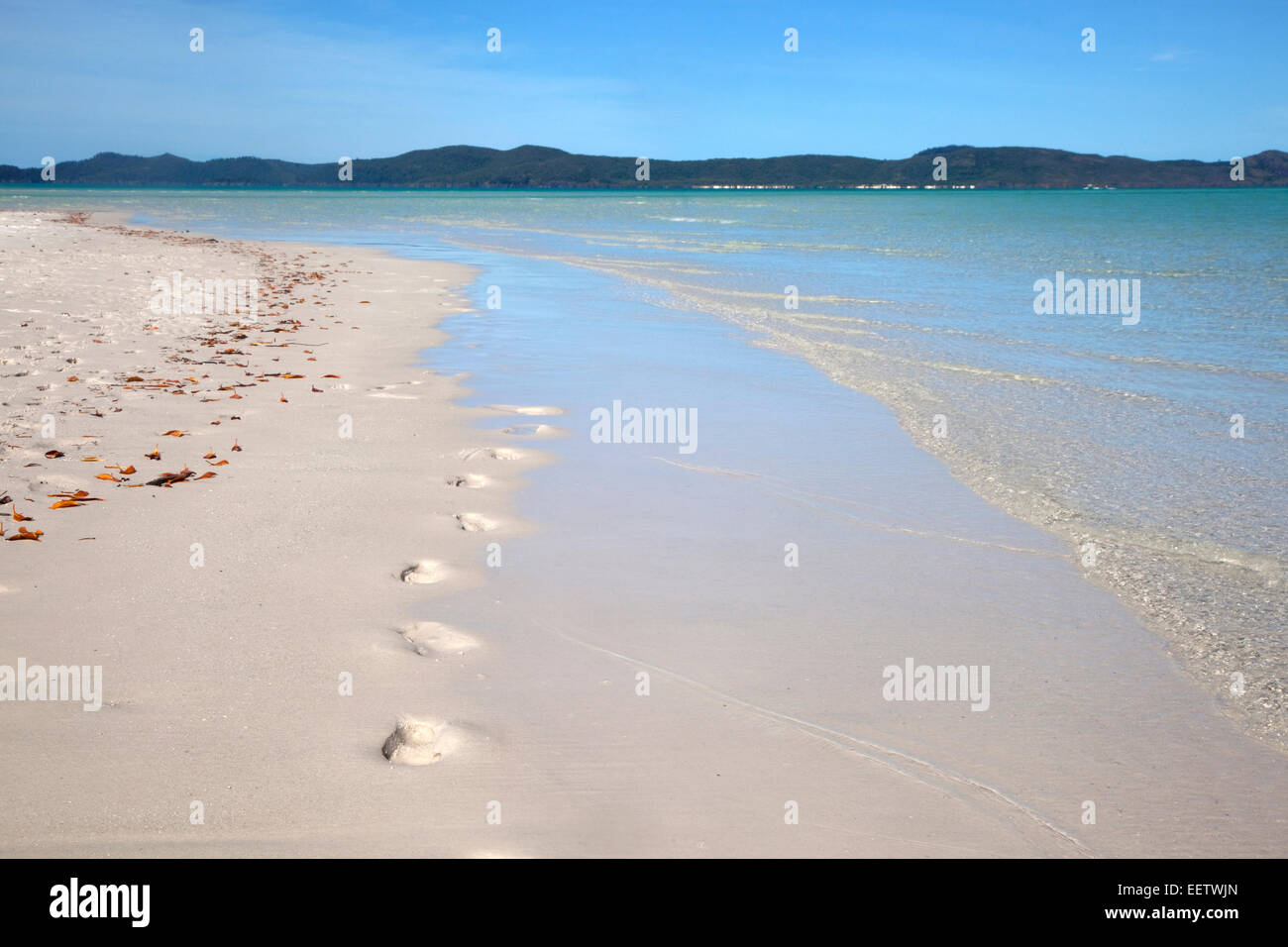 White sandy shoreline of Whitehaven Beach on Whitsunday Island in the Coral Sea, Queensland, Australia - Stock Image