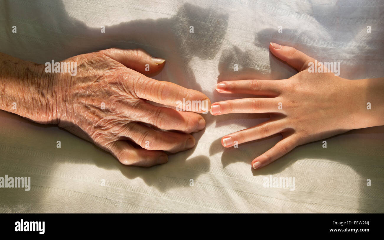 hands of grandmother and grandchild in the bed - Stock Image