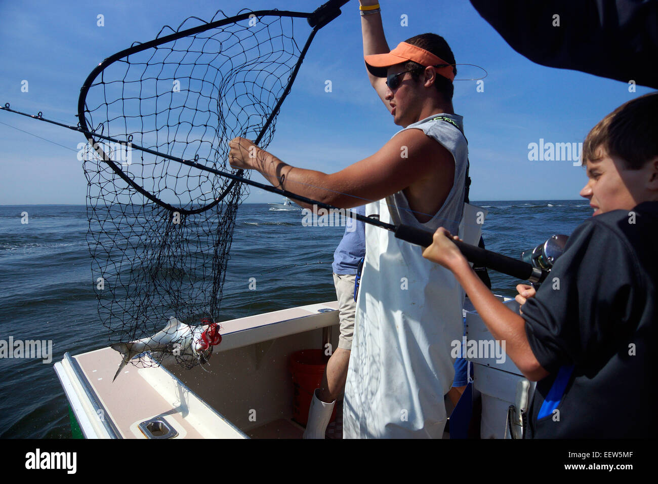 Bluefishing on a charter boat in Clinton, CT USA - Stock Image