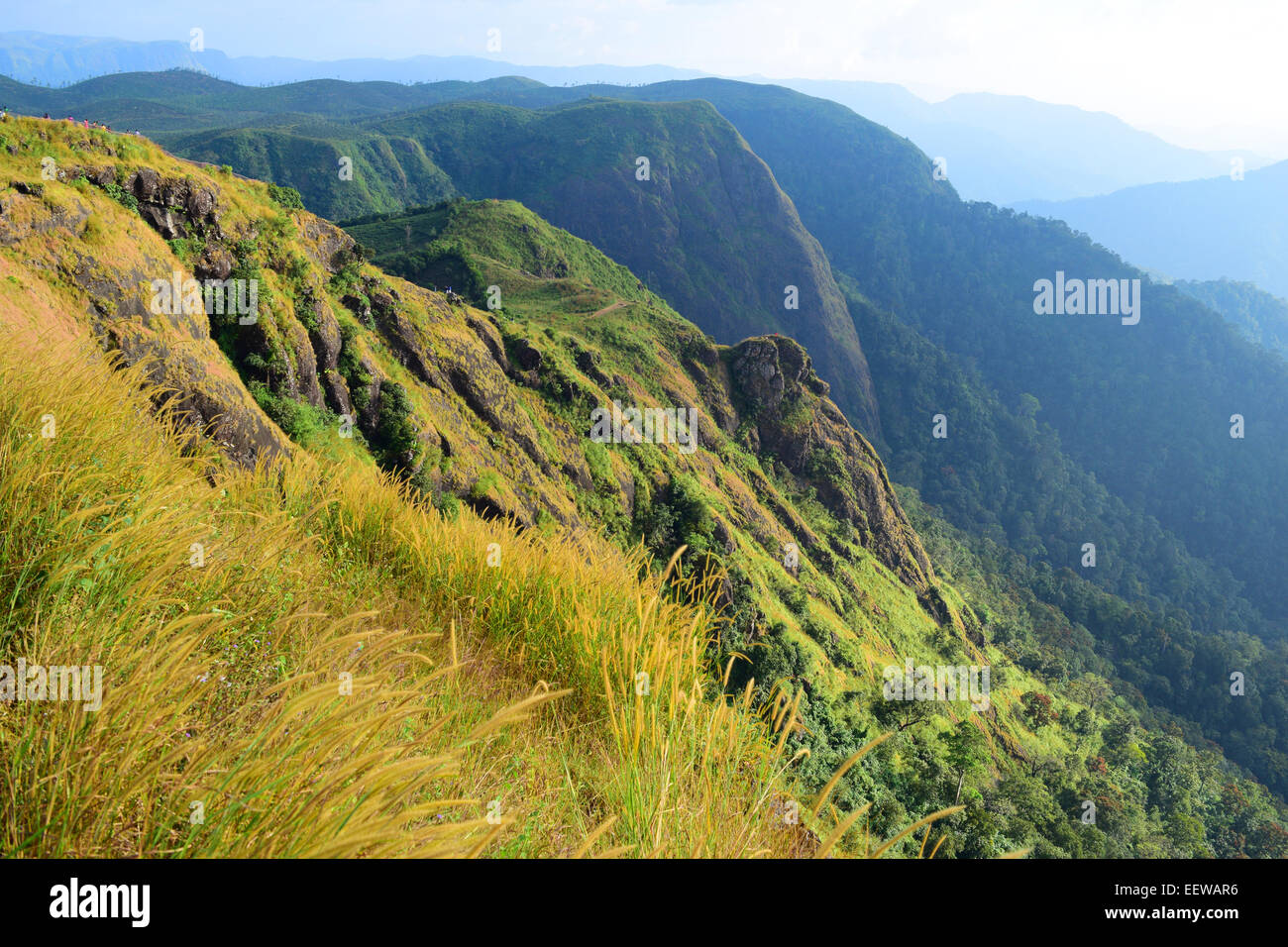 Western Ghats India Scenic Landscape Mountains and Valleys at Idukki District of Kerala - Stock Image