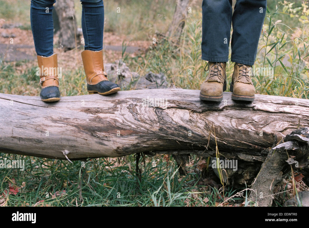 Close up of couple standing side by side on a tree trunk. Stock Photo