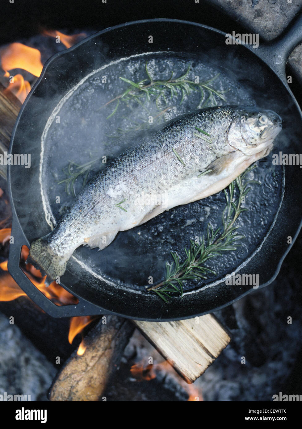 Fish in a frying pan over an outdoor fire. - Stock Image