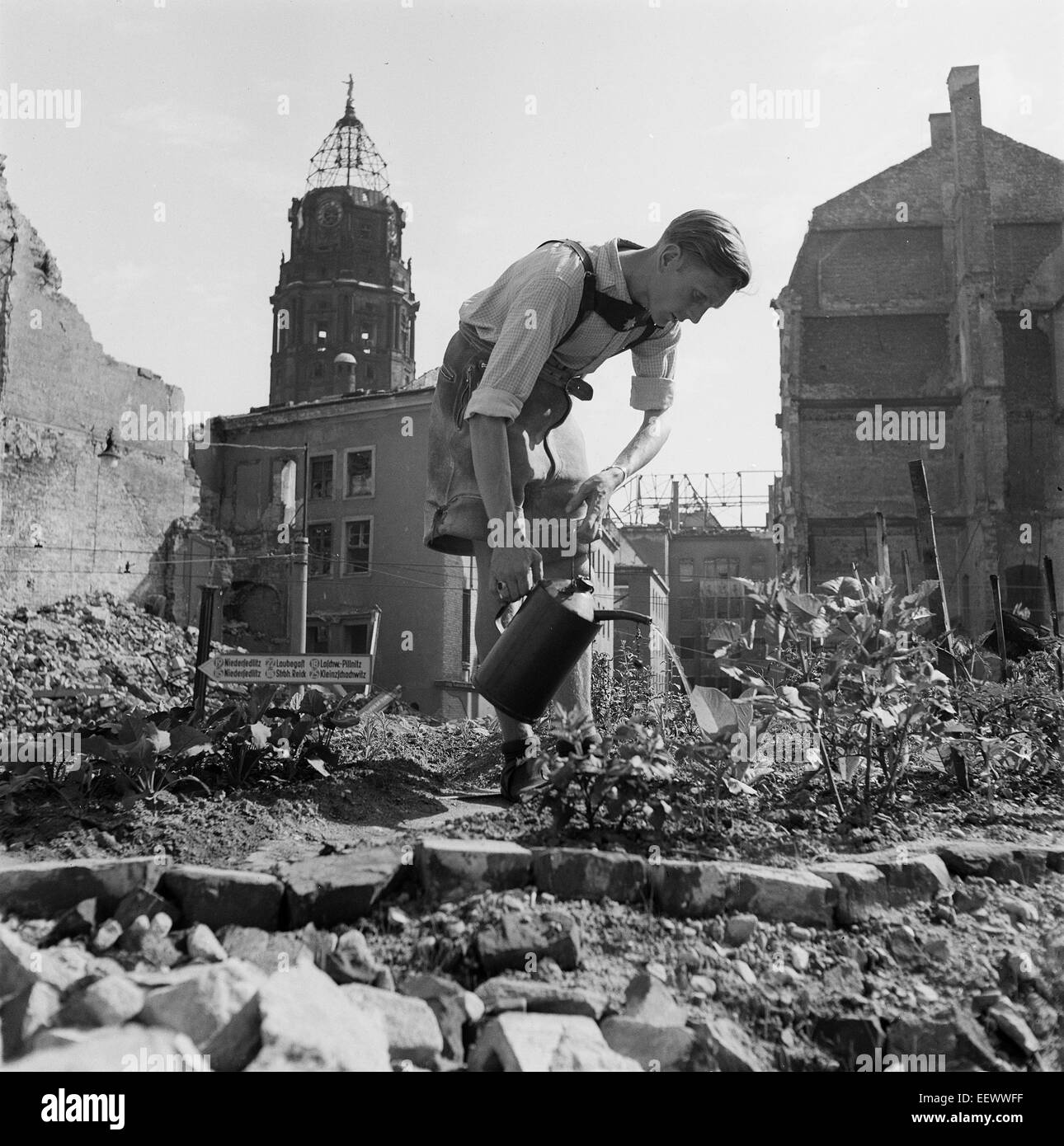 The photo by famous photographer Richard Peter sen. shows a young man who is growing vegetables, surrounded by ruins Stock Photo