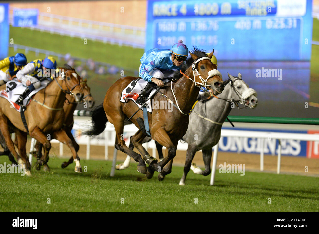 Dubai, UAE. 22nd January, 2015. UMGIYO ridden by Christophe Soumillon wins the  Gulf News Classifieds  Handicap - Stock Image