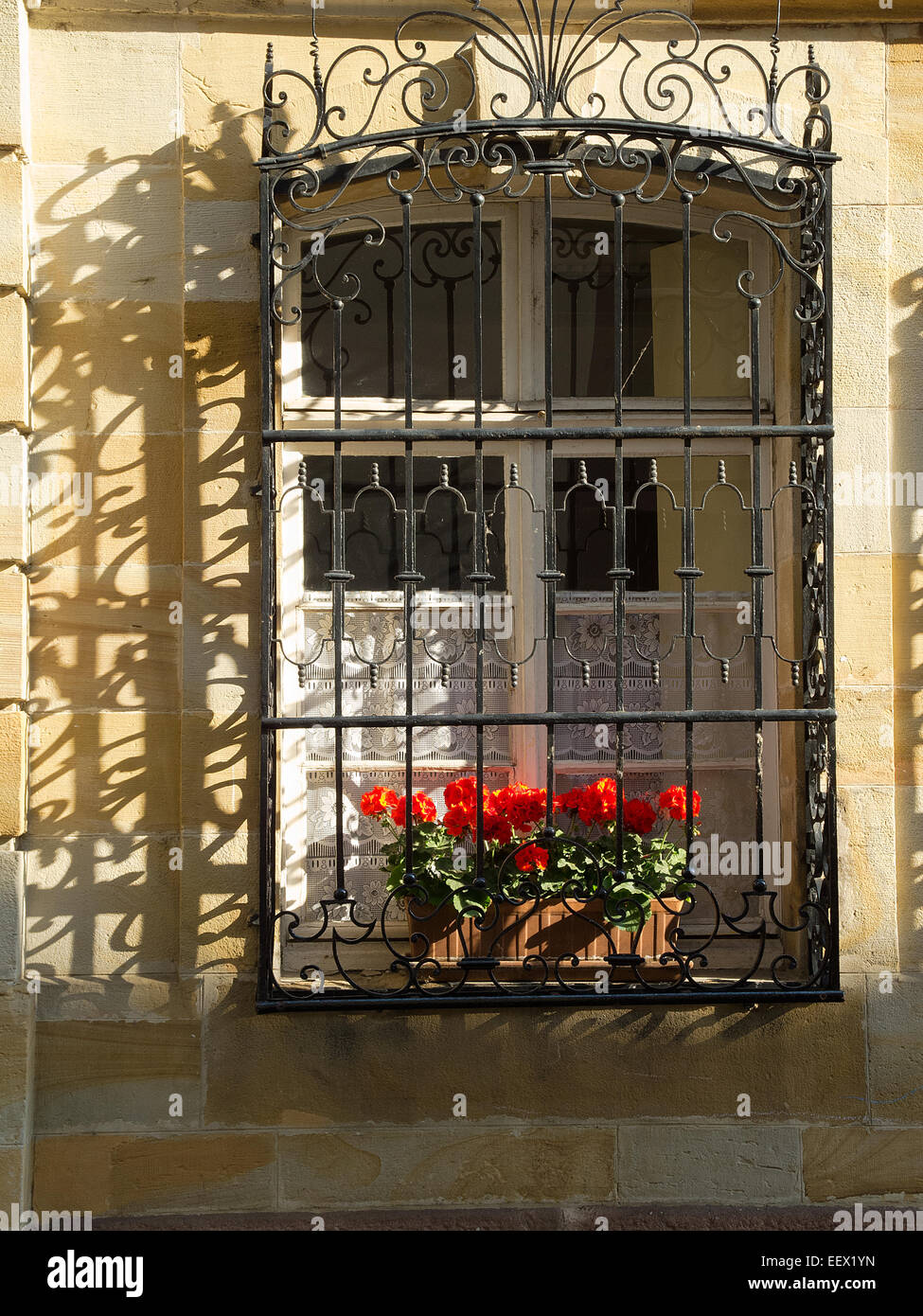 window with geraniums Mulhouse France - Stock Image