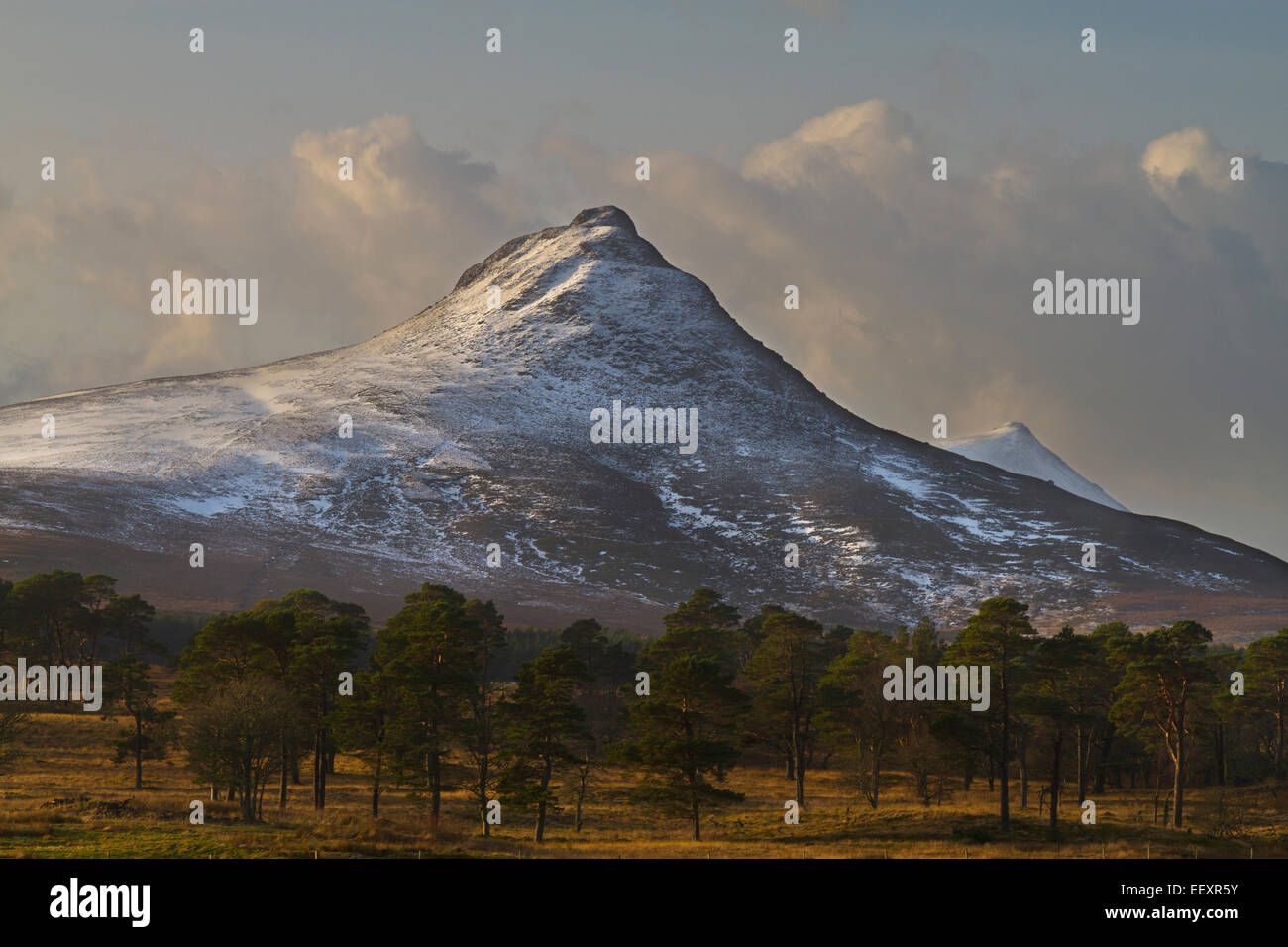 Caithness, Maiden Pap mountain - Stock Image