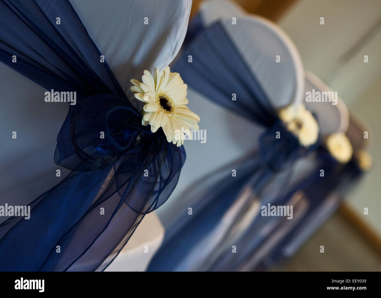 flowers and bows for a wedding - Stock Image