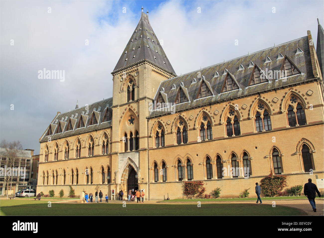 Oxford University Museum of Natural History and Pitt Rivers Museum, Oxford, Oxfordshire, England, Great Britain, - Stock Image