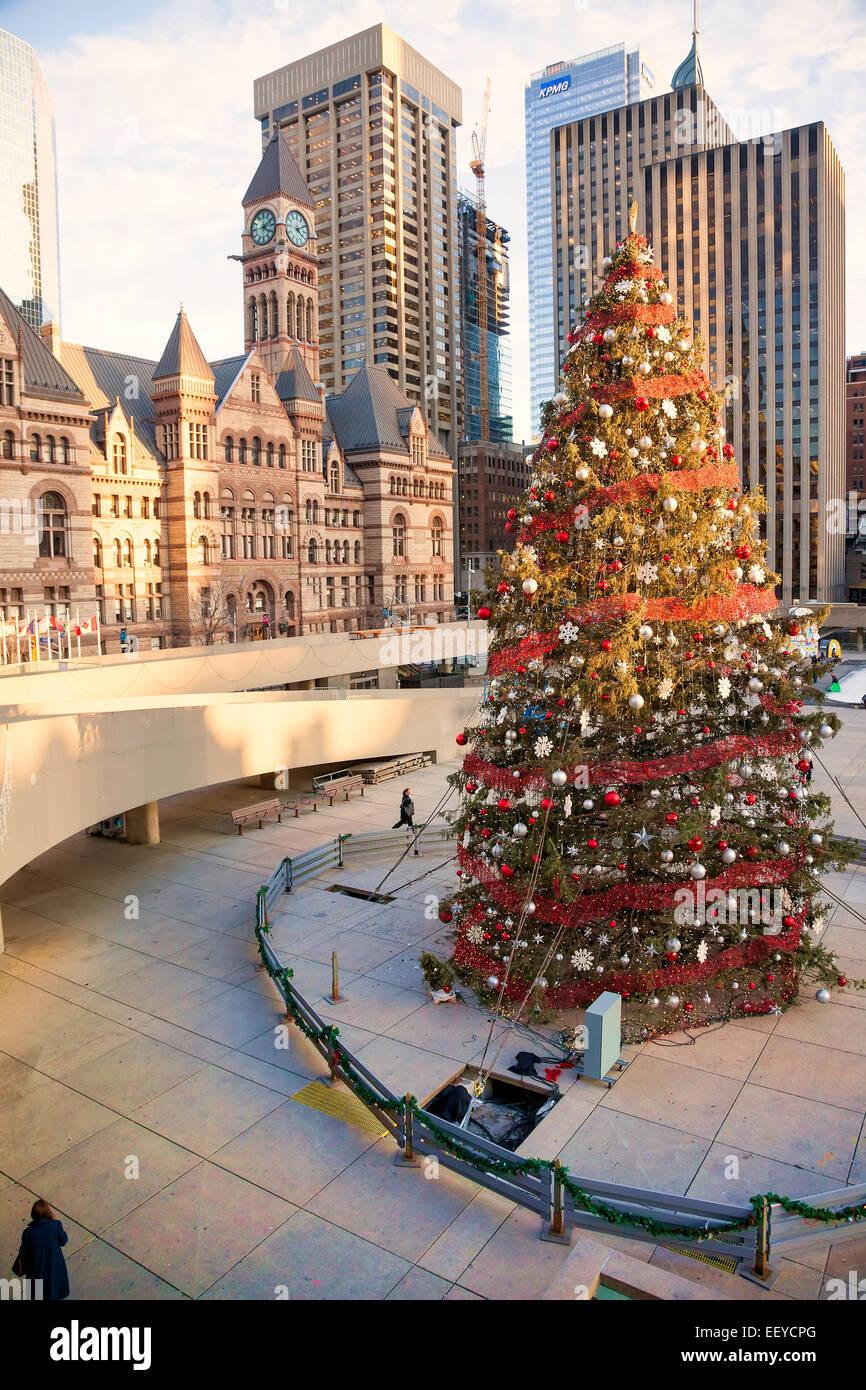 Christmas In Toronto Canada.Christmas Tree At Toronto City Hall At Christmas Time And