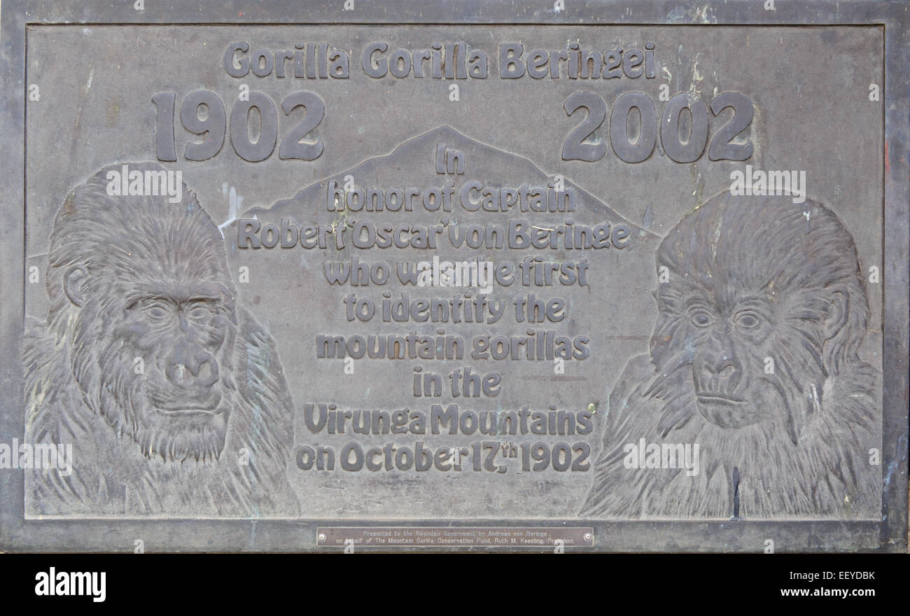 Memorial plaque dedicated to Captain von Beringe who was the first to identify the mountain gorilla. Rwanda. - Stock Image