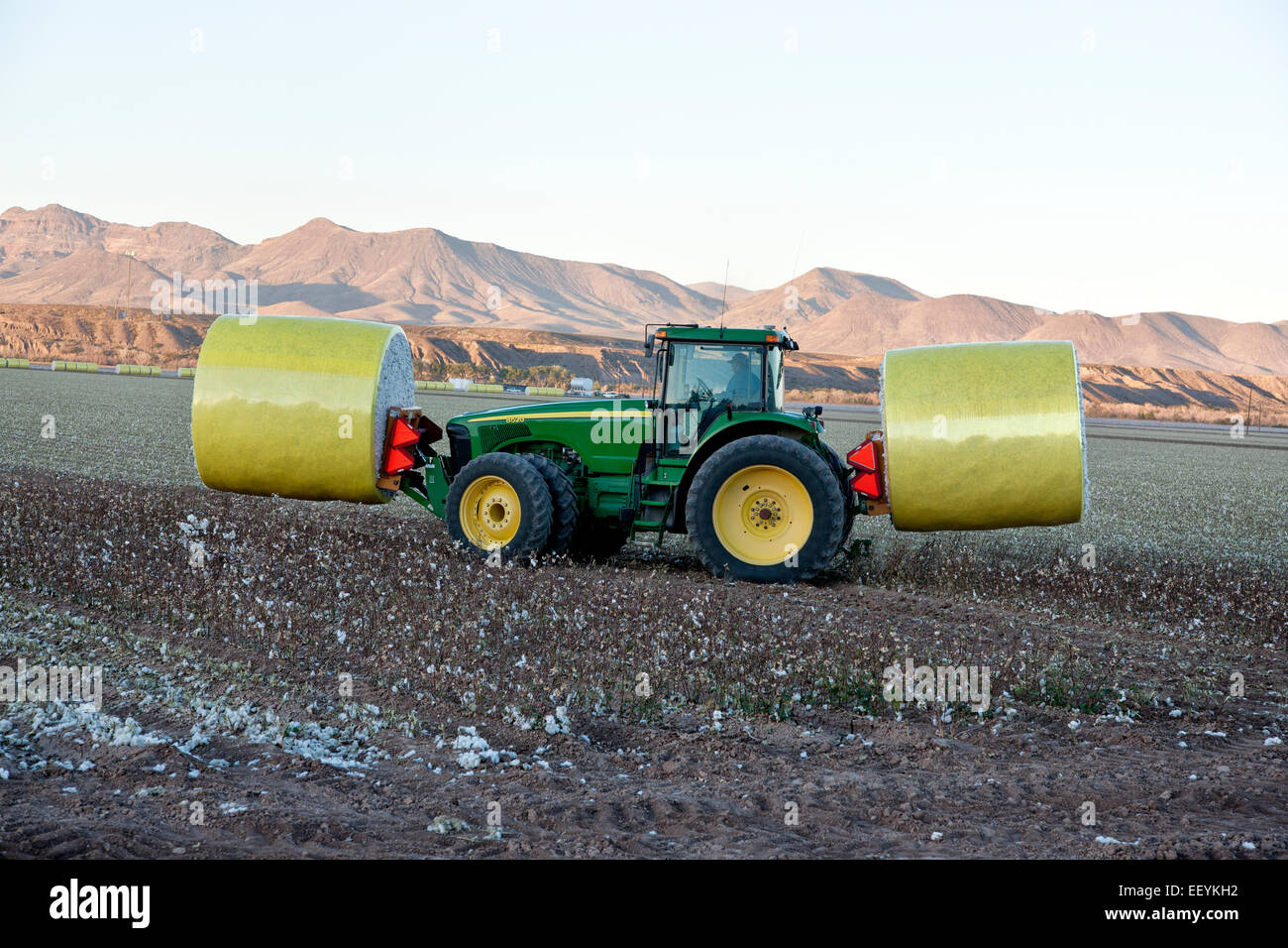 Tractor transporting cotton modules. - Stock Image