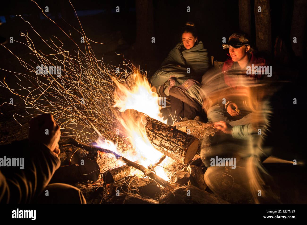 Friends enjoy a campfire after an afternoon of llama trekking, and hiking in the Swan Mountain Range in northwest - Stock Image