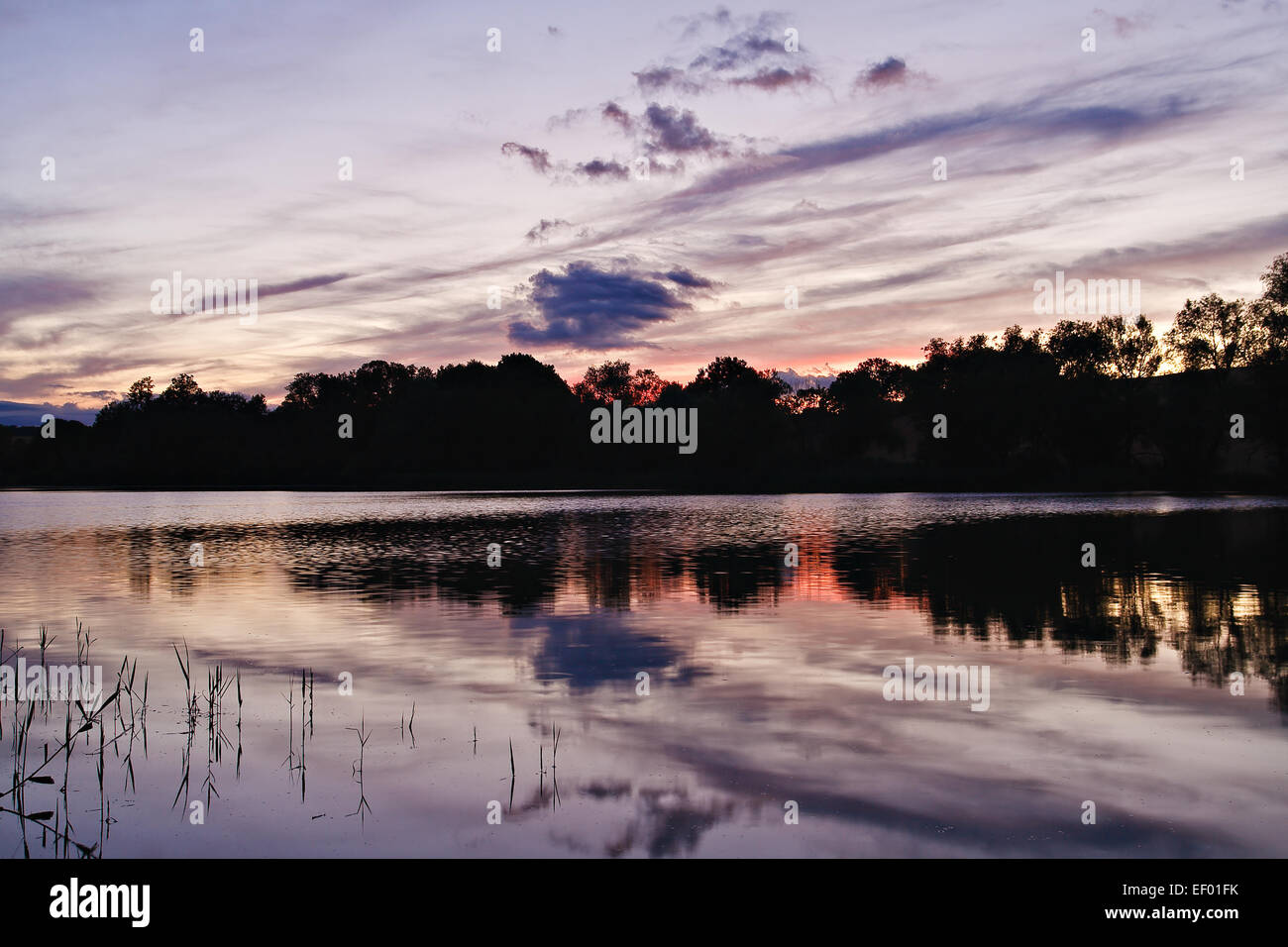 Evening at the lake. - Stock Image