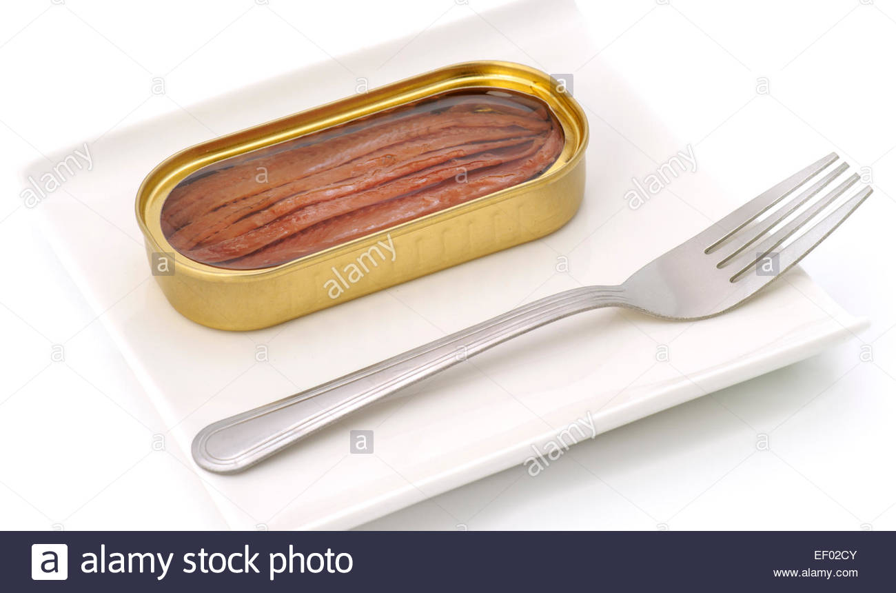 tin of anchovies filleted open tray - Stock Image