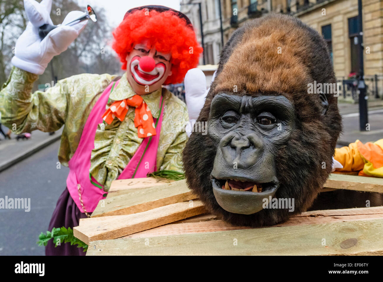 Participant in London 2015 New Year's Day Parade - Stock Image