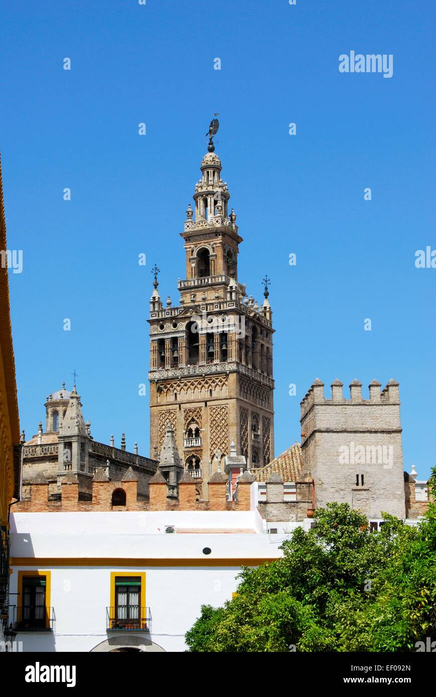 Giralda Tower Seen From The Patio De Las Banderas Seville Seville