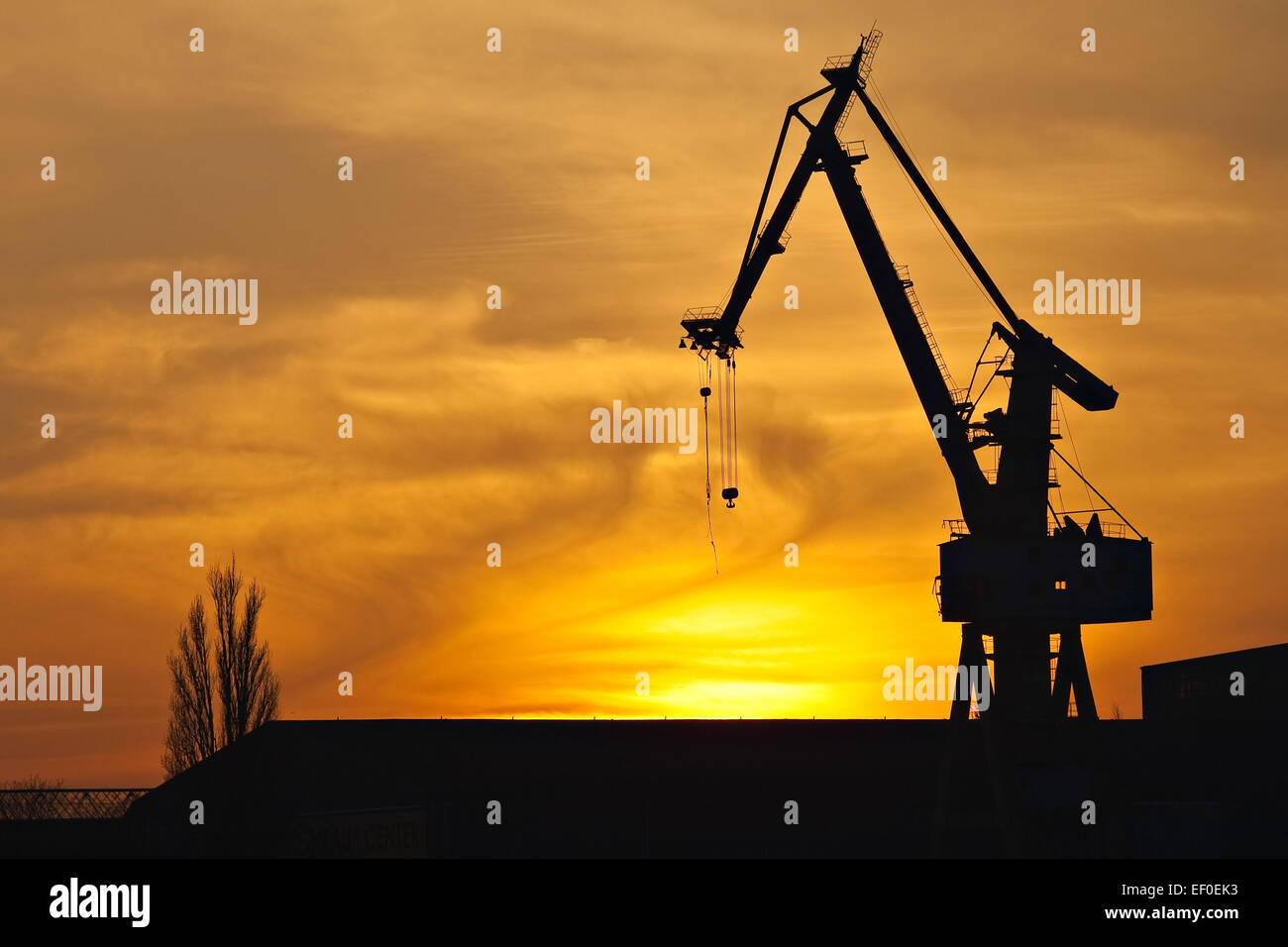 Port crane in the sunset. - Stock Image