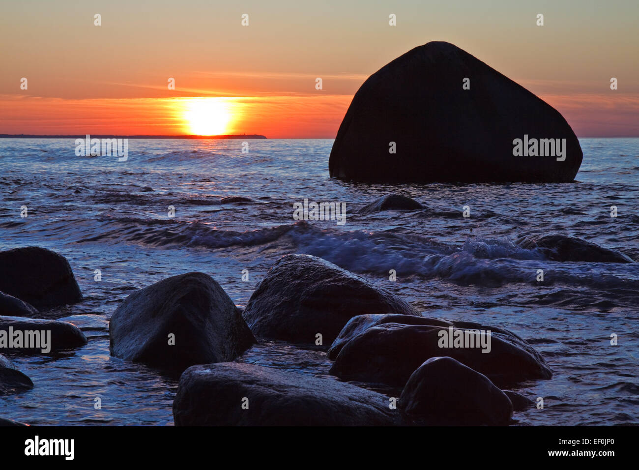Swan Stone Stock Photos & Swan Stone Stock Images - Alamy