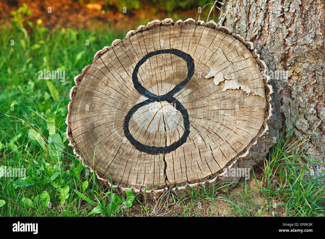 A night on a tree trunk as a house number. Stock Photo