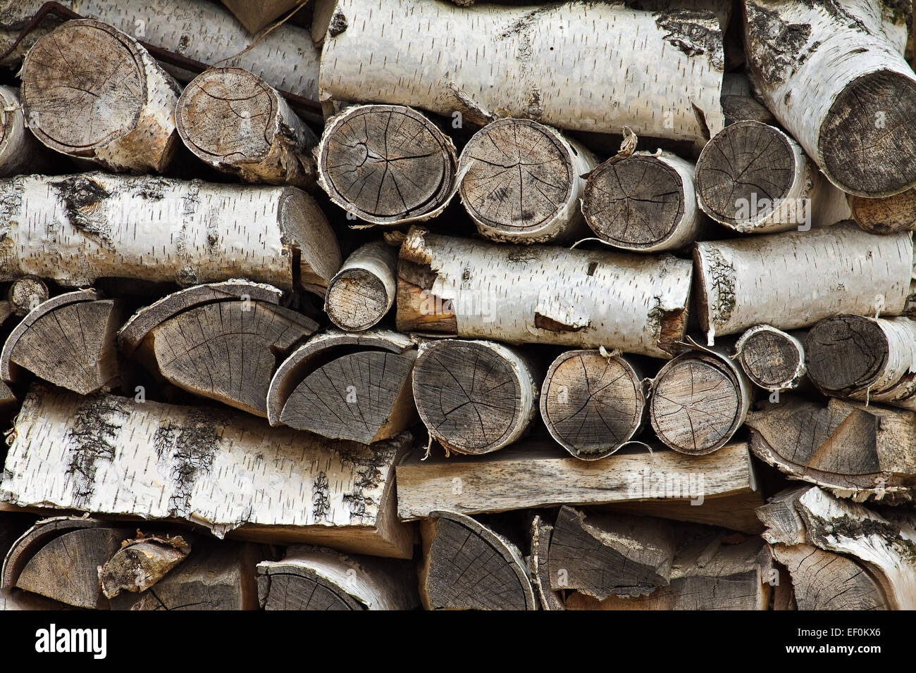 A stack of birch wood. - Stock Image