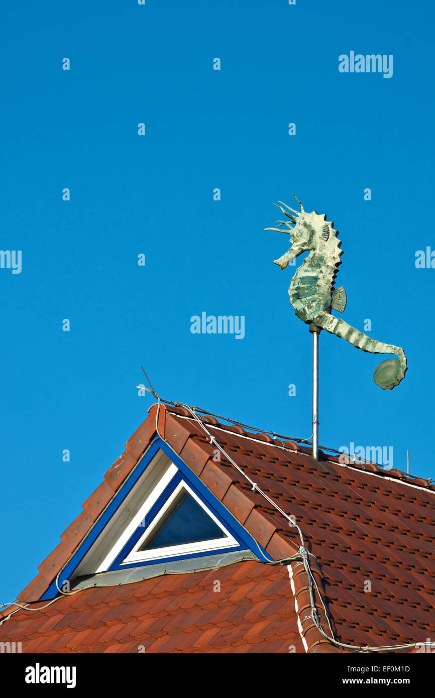 A sea horse on a roof. - Stock Image