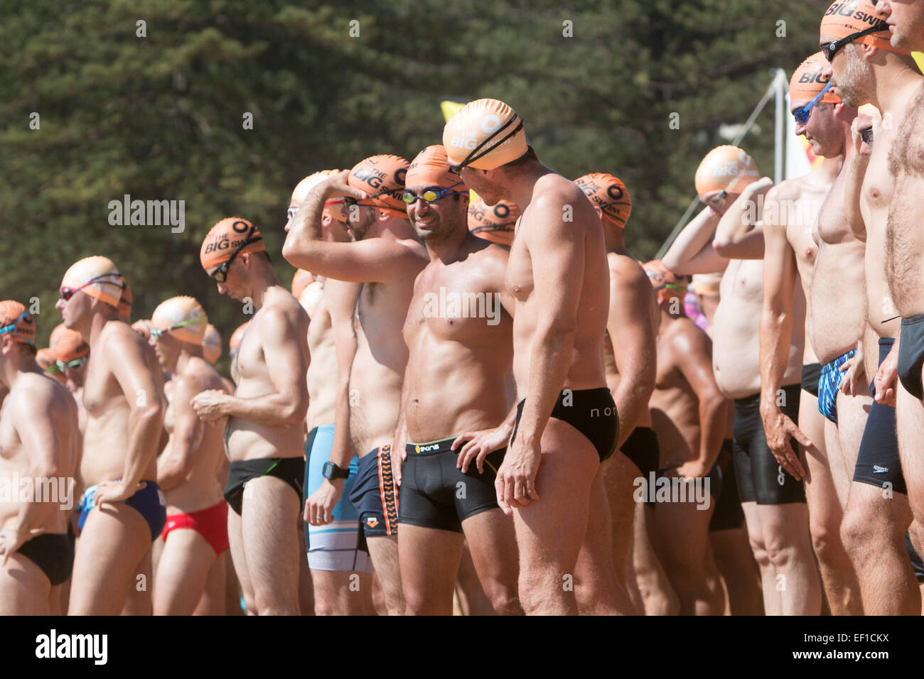 Sydney, Australia. 25th Jan, 2015. This is the 41st Ocean swim race from Palm Beach Pavillion to the centre of Whale - Stock Image