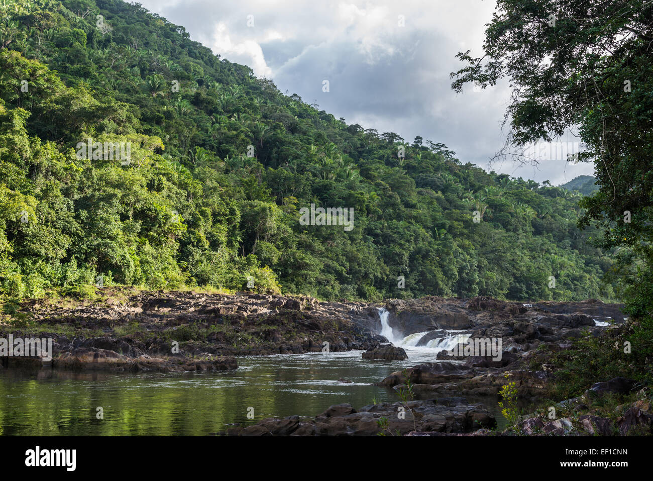 Vaca Falls on the Macal River running through lush jungles of Belize, Central America. - Stock Image