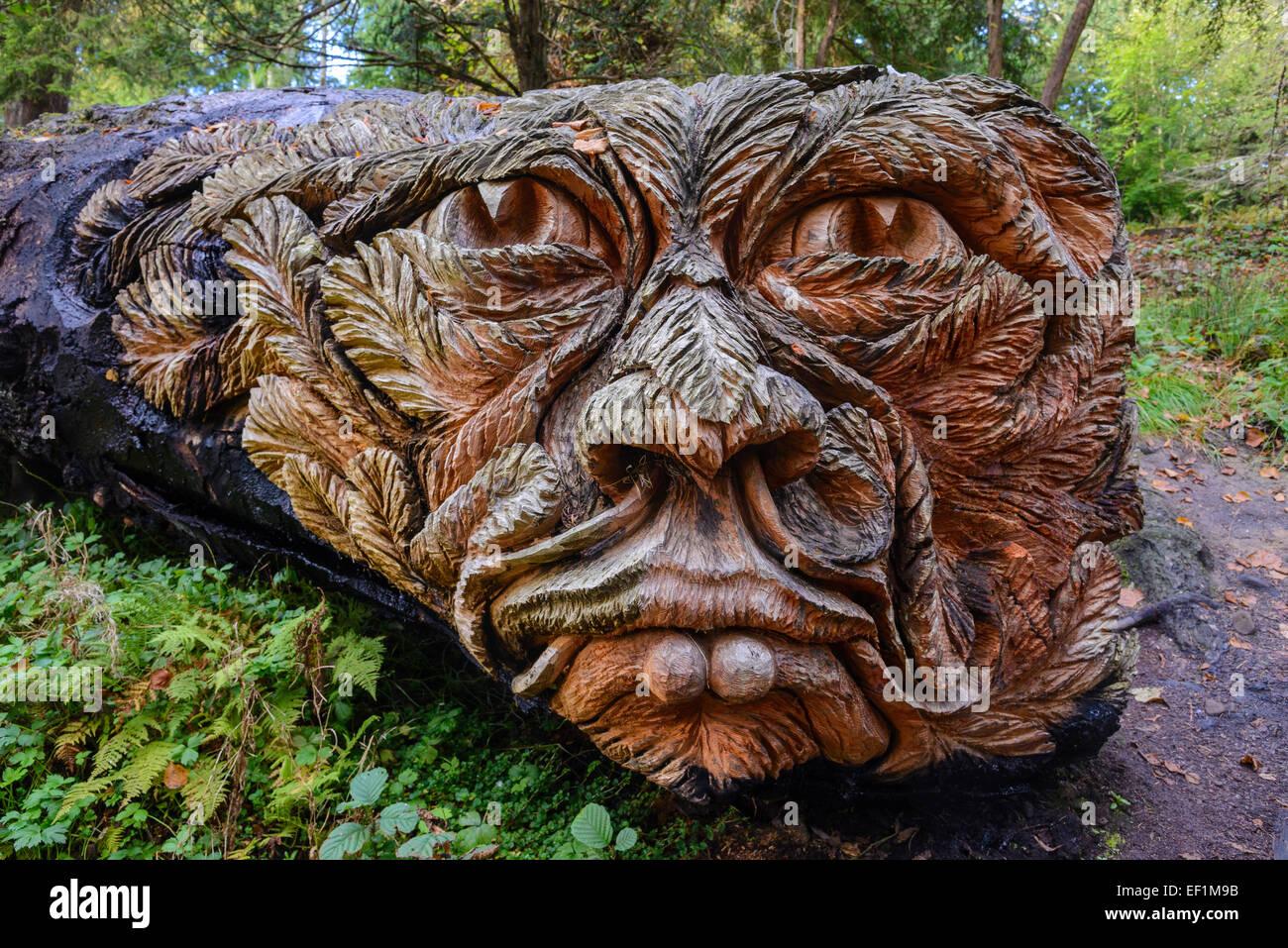 Wood carving, Cragside Gardens, Northumberland, England - Stock Image