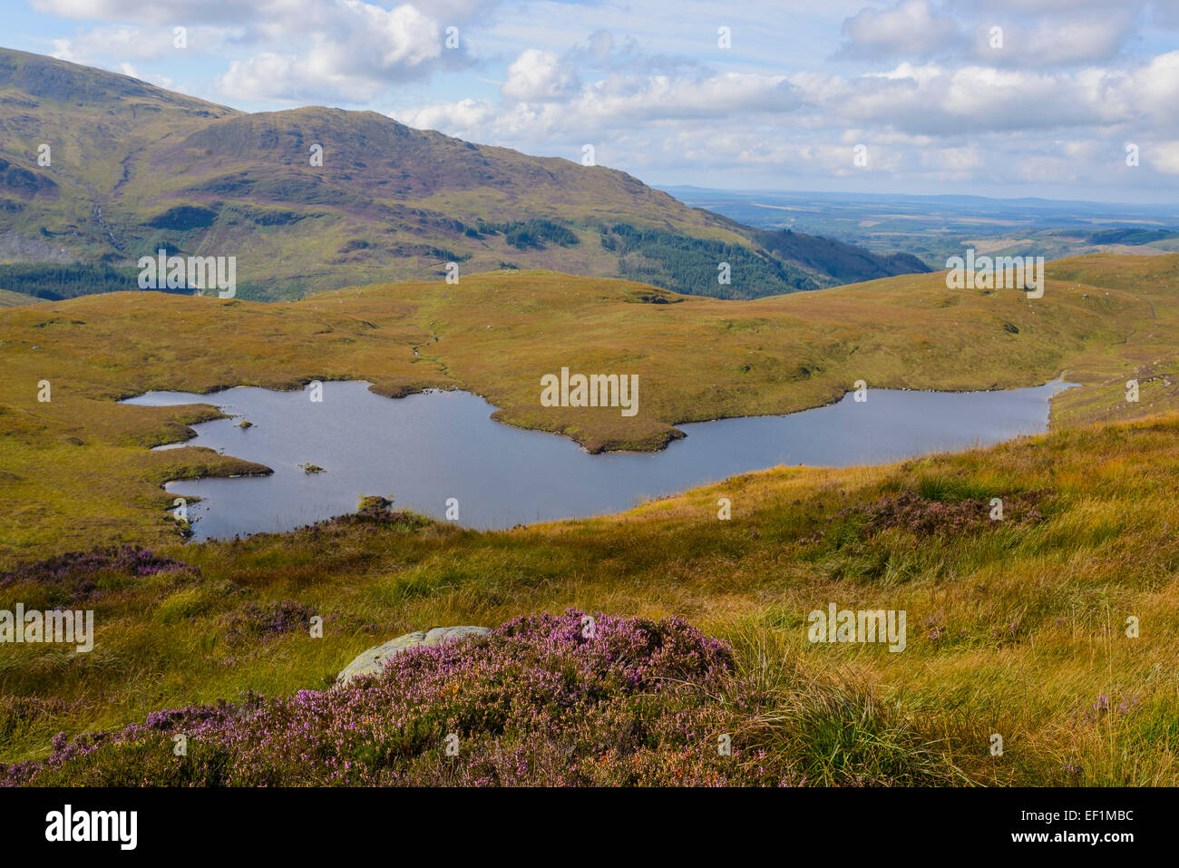 Long Loch of Glenhead from Rig of the Jarkness, Galloway Hills, Dumfries & Galloway, Scotland - Stock Image