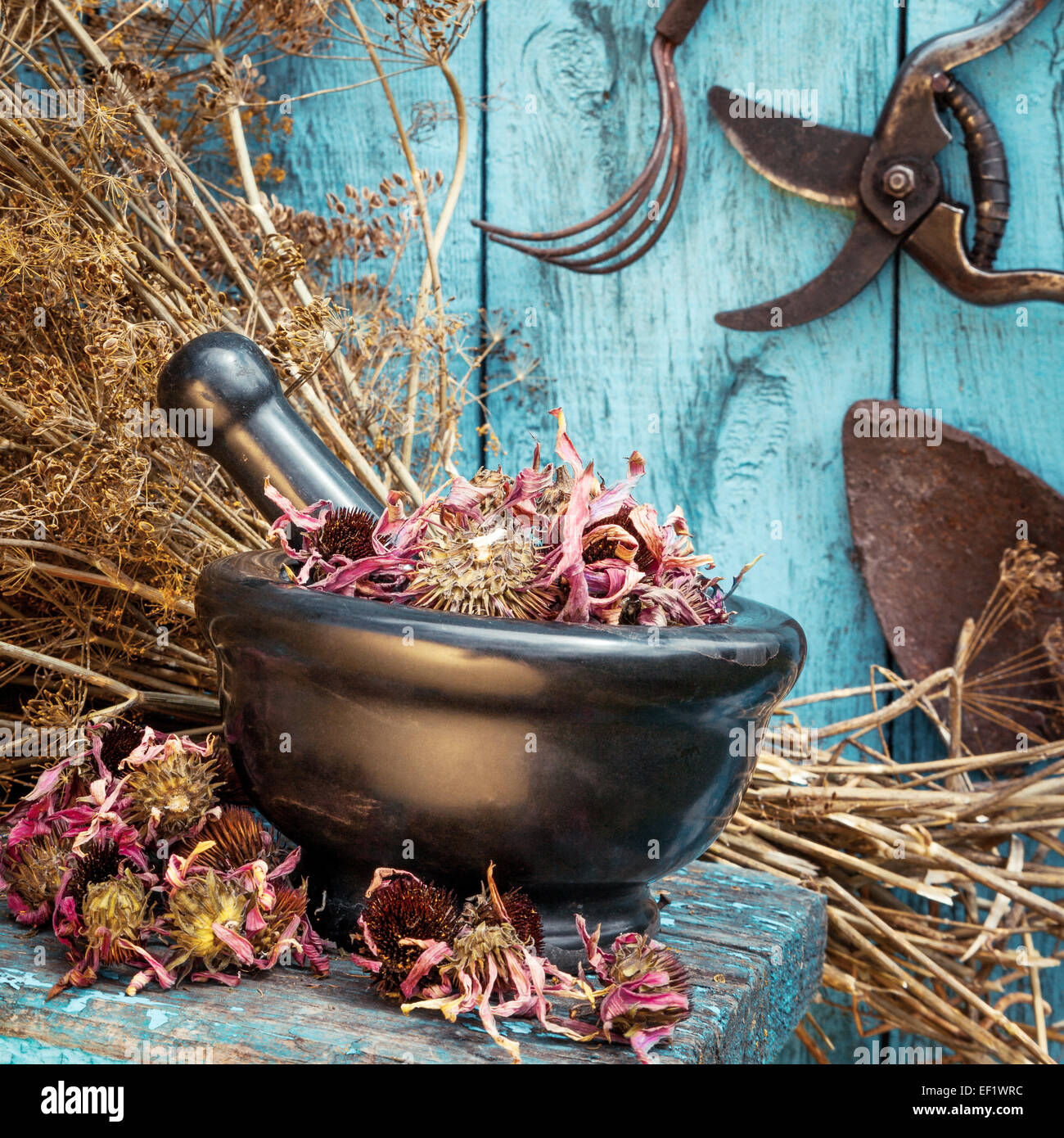 Dried Herbs Hanging Stock Photos & Dried Herbs Hanging Stock Images ...