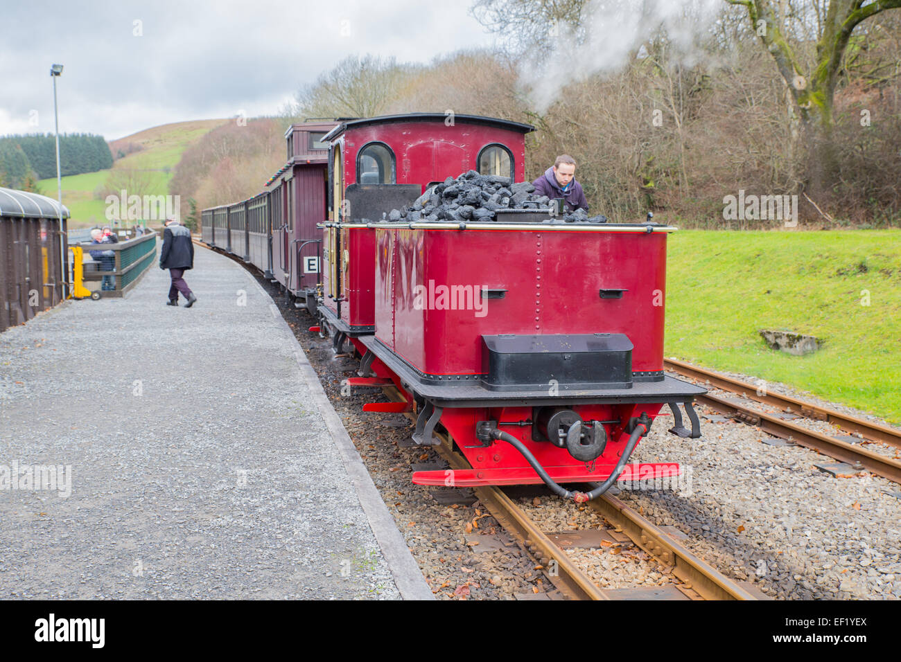 Steam engine at the Brecon Mountain Railway. - Stock Image