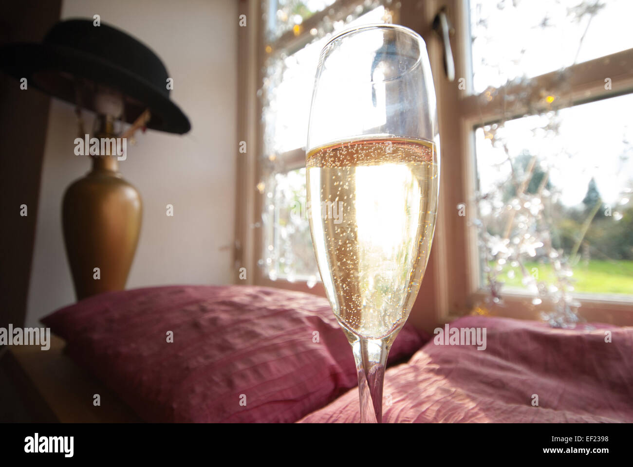 A glass of champagne beside a window in a sunbeam, with Christmas lights in the background. The sunlight glints - Stock Image