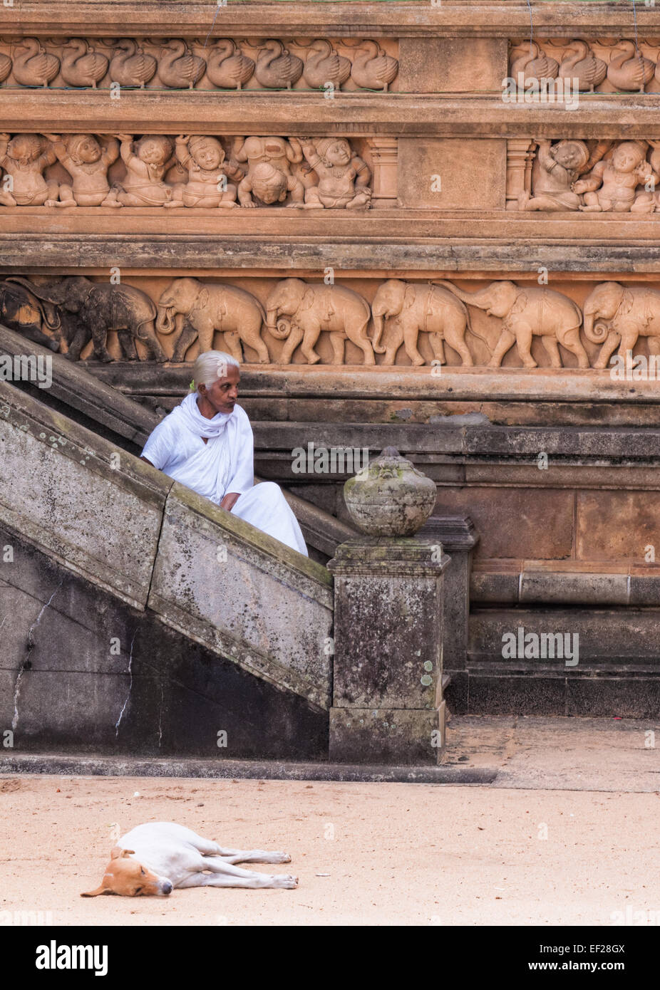 A robed figure sits on the steps outside the New Temple House at the Buddhist Kelaniya Temple, Colombo, Sri Lanka - Stock Image