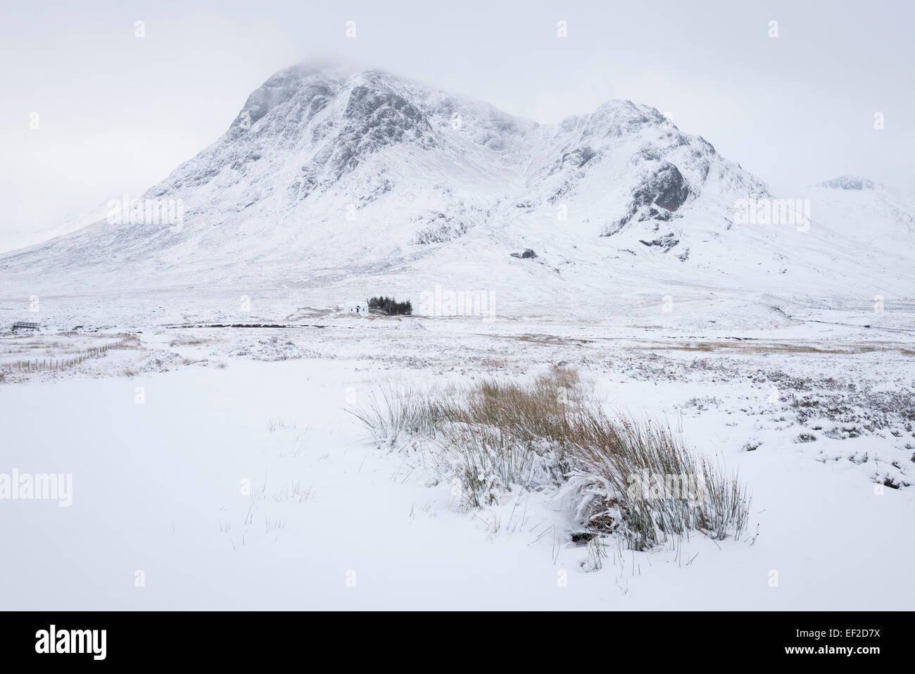 Buachaille Etive Mor from Altnafeadh, Glencoe, Scottish Highlands, Scotland - Stock Image