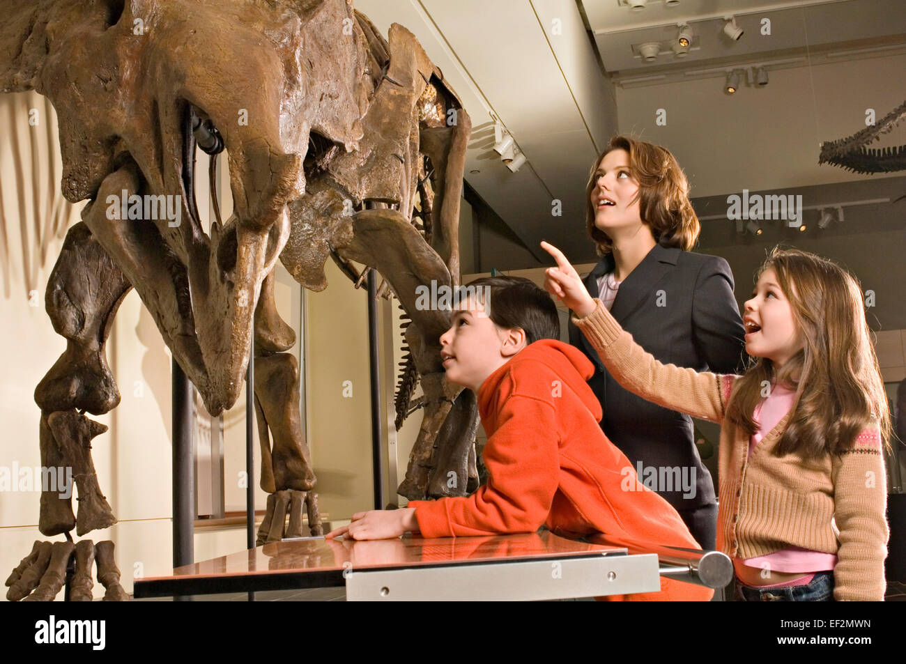 Teacher and students in museum by dinosaur fossil display - Stock Image