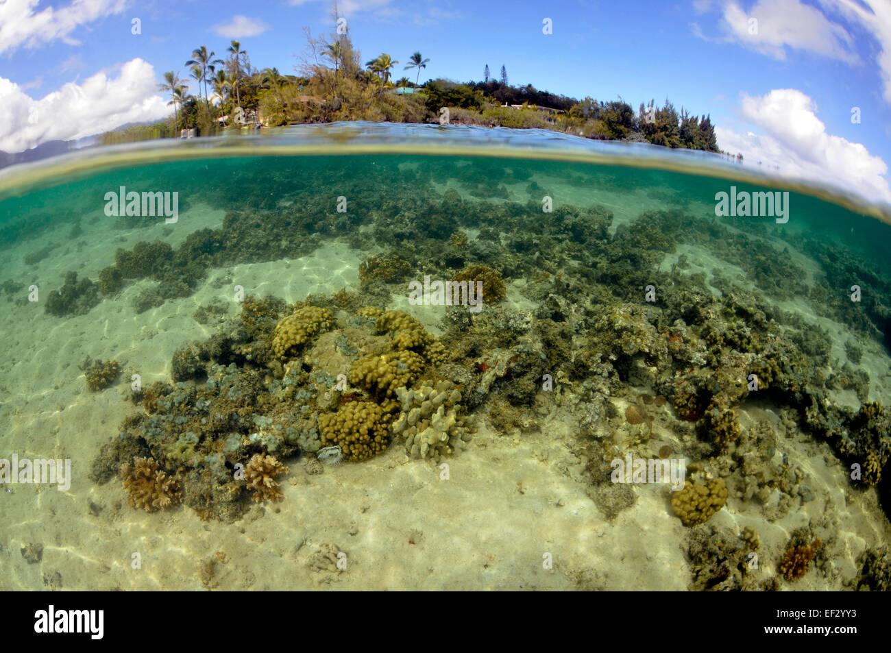 Coconut Island, Kaneohe Bay, Oahu, Hawaii, USA Stock Photo