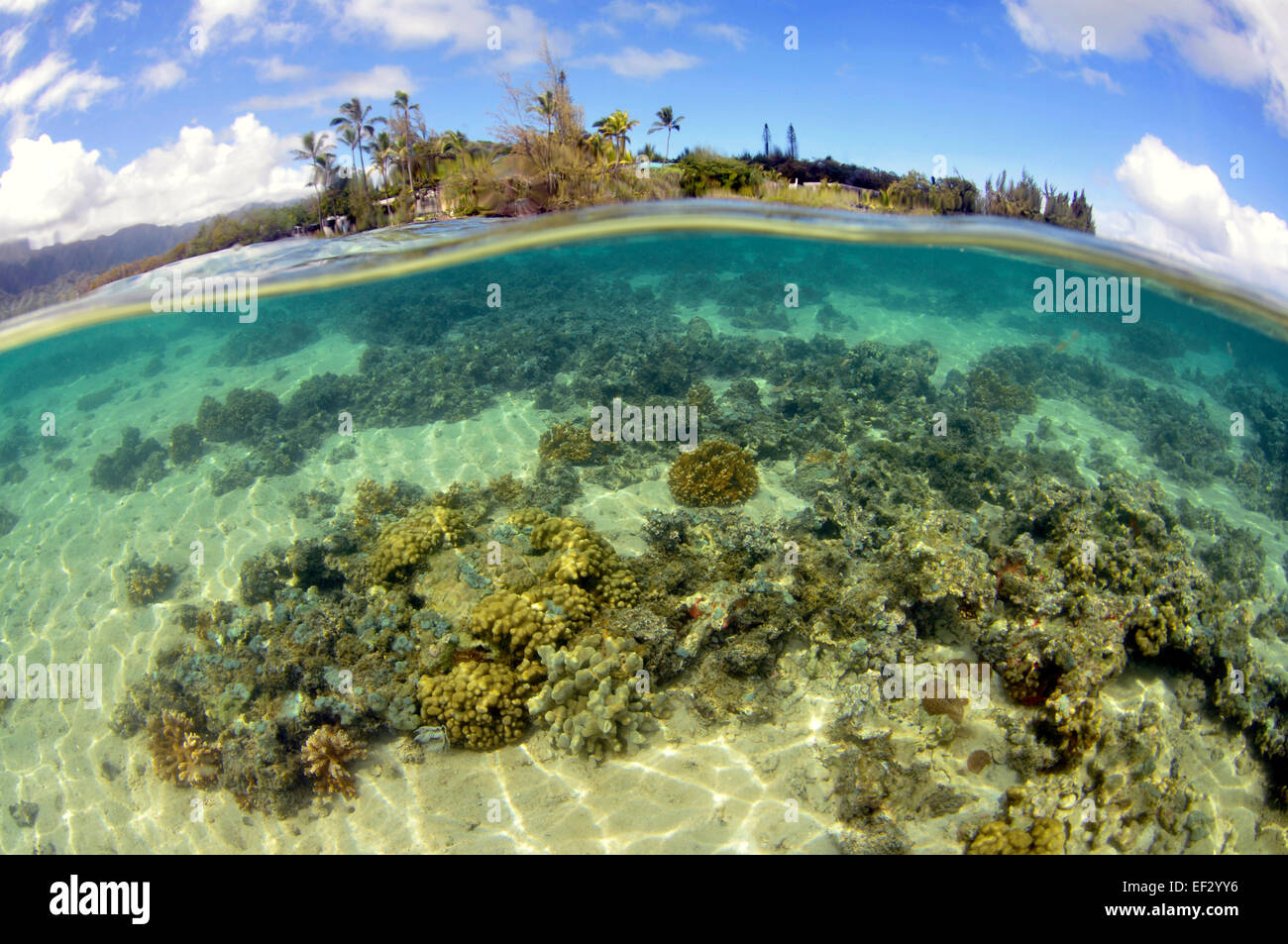 Coconut Island, Kaneohe Bay, Oahu, Hawaii, USA - Stock Image