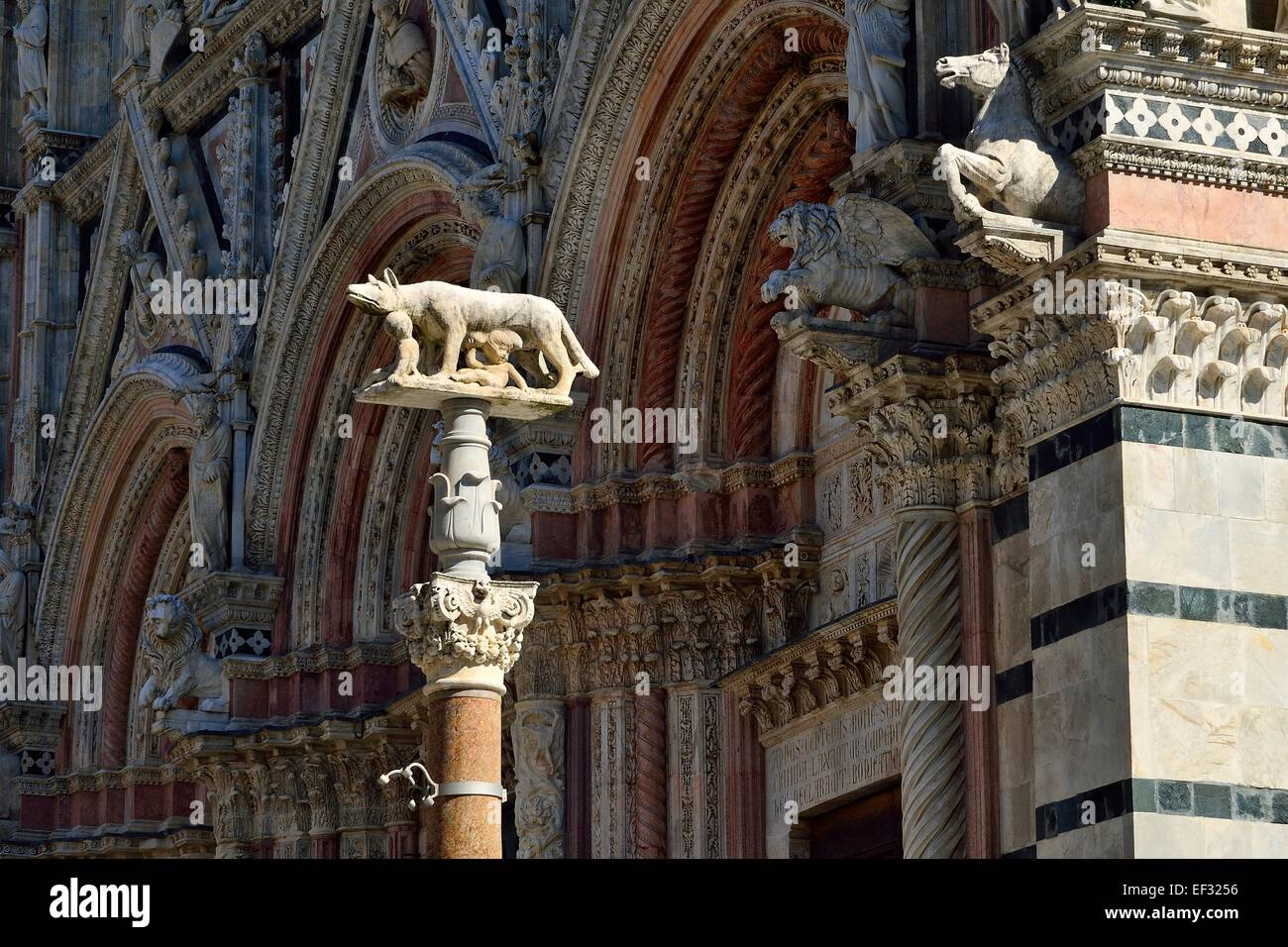 She-wolf with Romulus and Remus in front of the Duomo of Siena, Cattedrale di Santa Maria Assunta, Siena, Province - Stock Image