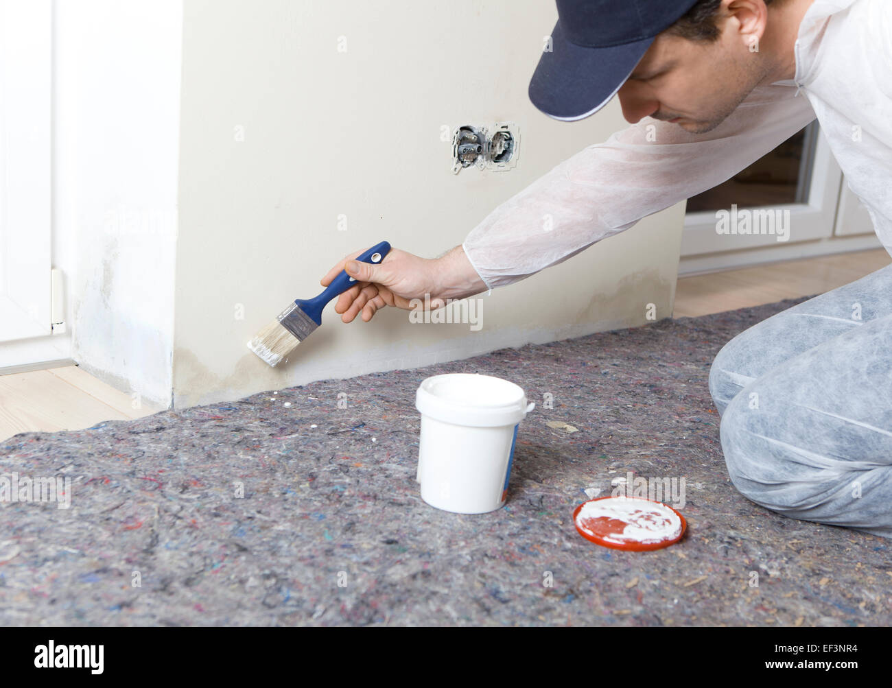 Painter paints damp walls in an apartment with a special color - Stock Image