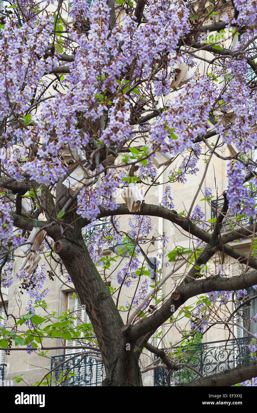 Book Hang On Tree With Blue Flowers France Paris Stock Photo
