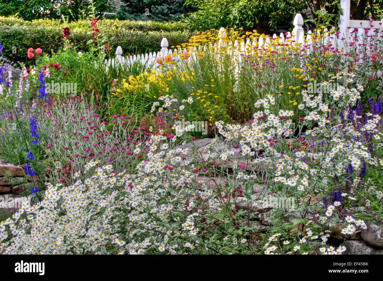 An Informal Low Water Garden   Stock Image