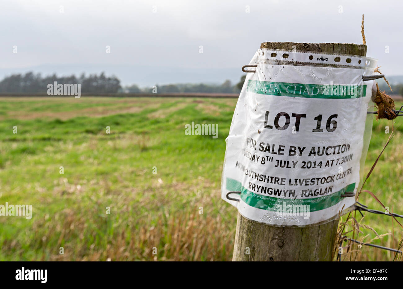 Sale by lot auction sign for farmland, Usk valley, Wales, UK - Stock Image